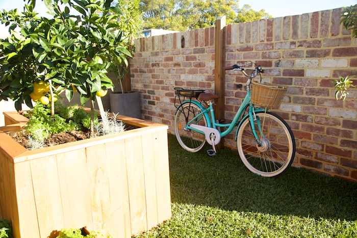 Bike and wall and planter box