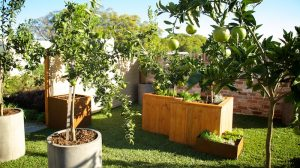 Small Garden Design for Perth Homes - Images of Small ...