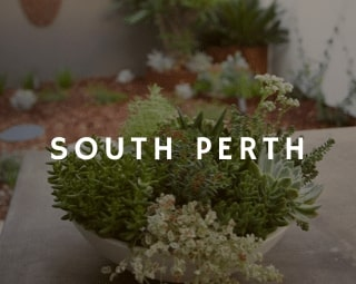 """Perth Landscaping was called in to help turn a client's small, inner-city courtyard, which had a poorly-installed """"developers garden"""" design, into a tailor-made, stunning outdoor area to integrate with his lifestyle and tastes."""